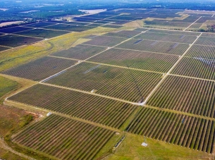 Arial view of utility-scale solar