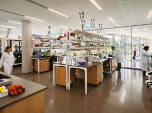 Donald Danforth Plant Science Center Lab in Action